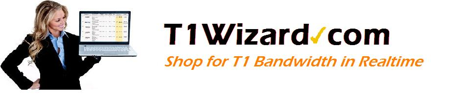 T1Wizard Blog